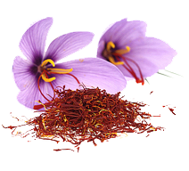 saffron and crocus flower